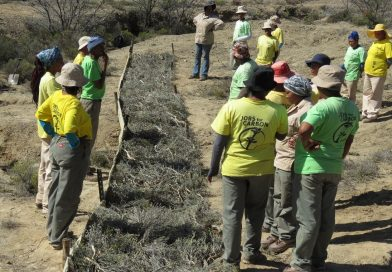 Restoration of the land and the people in Vanwyksdorp